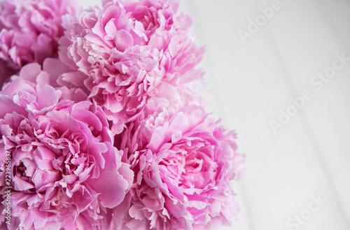Beauty pink peony flowers - 223965837