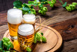 Leinwanddruck Bild - Bier - Alkohol - Spirituosen - Getränk - Hopfen - Gerste - Stutzen- Seidel - Kanne - Glas