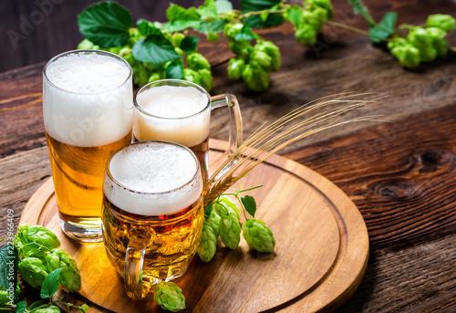 Leinwanddruck Bild Bier - Alkohol - Spirituosen - Getränk - Hopfen - Gerste - Stutzen- Seidel - Kanne - Glas