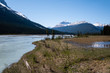 Flooded river side  near Saskatchewan River Crossing on icefield parkway