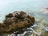 Krajobraz Istrii.  Widok pięknych europejskich miejsc odpoczynku w Chorwacja, Pula stare miasteczko. - 224010024