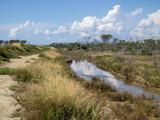 Graslandschaft mit Wolkenspiegelung im Wasser, Maremma, Italien - 224022054