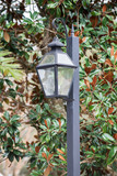 Black street Lantern - 224023628