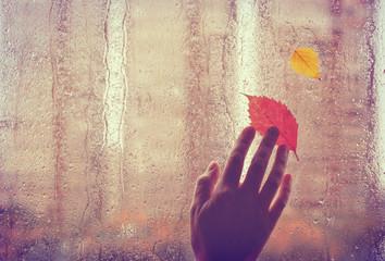 sad autumn background, old hand touches wet window