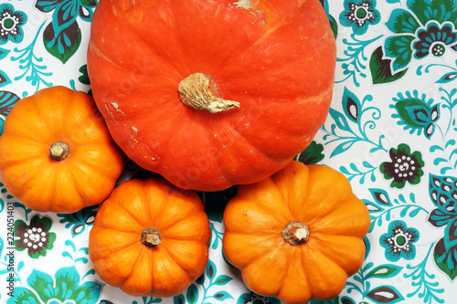 orange pumpkin on patterned background. Autumn harvest. - 224051403