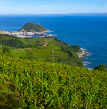 Vineyards and wine production with the Cantabrian sea in the background, Getaria Spain - 224057065