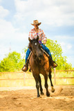 Cowgirl doing horse riding on countryside meadow - 224068079