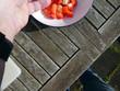 Tomaten Schafskäse Salat - 224076629