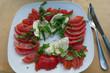 Caprese Salat - 224080282