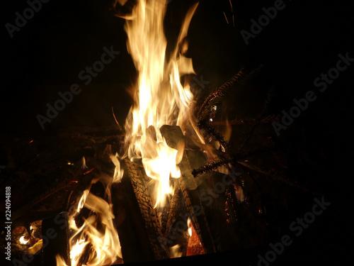 Knut Feuer - 224094818