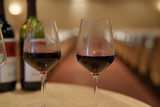 Glasses of red wine set on table in winery - 224103215
