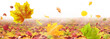 Leinwandbild Motiv Herbst 187
