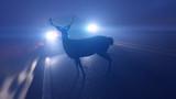 3d rendered illustration of a deer infront of a car - 224147094