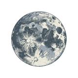 Hand drawn moon - 224149091