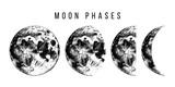 moon phases illustration - 224149858