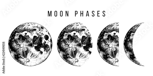 moon phases illustration