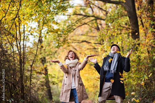 Senior couple on a walk in a forest in an autumn nature, throwing leaves. - 224152612