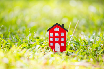 home model on grass background