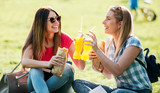 Campus life. Two young girls sitting in the park, eating sandwiches and drinking juice. Lifestyle concept - 224175851