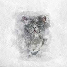 "Постер, картина, фотообои ""Watercolor painting of happy British Shorthair cat"""