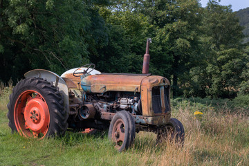 Old, rusty and abandoned tractor in field on a sunny evening