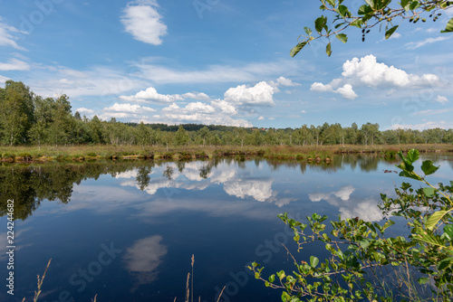 Marsh land with reflextion on lake - 224244682