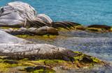 Famous Kolimbitres beach and big stones in Paros, Greece. - 224245270