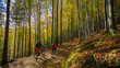 Cycling, mountain biker couple on cycle trail in autumn forest. Mountain biking in autumn landscape forest. Man and woman cycling MTB flow uphill trail. - 224295020