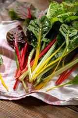 Harvest of fresh swiss chard