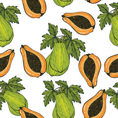 Papaya hand drawn seamless pattern.Papaya vector illustration.Sweet Exotic Thailand asian fruit. Tropical fruit backgrounisolated design. © nujtmom