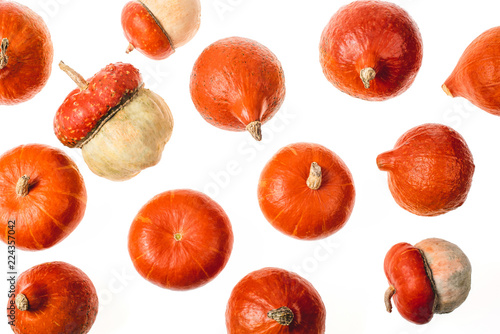 top view of scattered ripe pumpkins isolated on white - 224357042