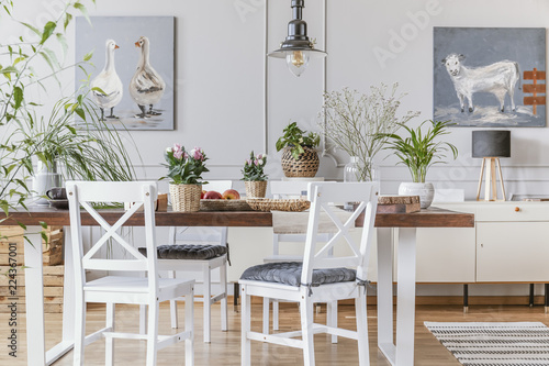White chairs at wooden table with flowers in eclectic dining room interior with posters. Real photo