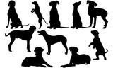 Dalmatian Dog svg files cricut,  silhouette clip art, Vector illustration eps, Black Dog  overlay