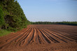 PEI Field prepared for planting