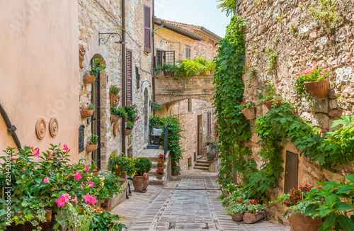 Scenic sight in Spello, flowery and picturesque village in Umbria, province of Perugia, Italy. - 224420826