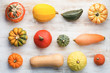 Above view of pumpkins and gourds on the white wooden tablebackground arranged in a grid, selective focus