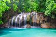 Deep rain forest jungle waterfall - 224470688