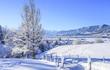 Leinwandbild Motiv winterliche Szenerie im bayrischen Allgäu
