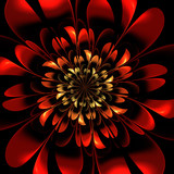 Beautiful red flower on black background. Artwork for creative design, art and entertainment. - 224545817