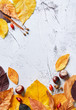 Autumn leaves on a stone background. Full frame of seasonal natural pattern viewed from above. Top view. Copy space.