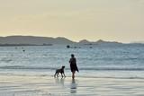 Un chien qui joue avec sa maîtresse le soir sur une plage en Bretagne.