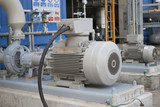 Induction motor with centrifugal pump - 224553076