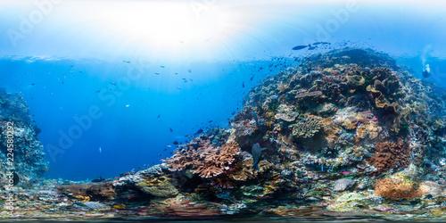 Leinwanddruck Bild Diver on raja ampat reef