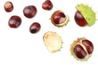 Leinwandbild Motiv chestnuts isolated on white background. top view
