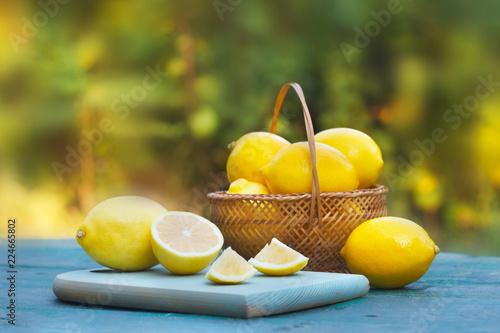 Foto Murales Fresh, ripe lemons in wicker basket. Green nature in background.