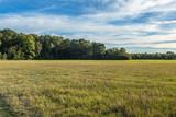 Herbstwiese 3 - 224712643