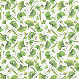 Seamless pattern with green leaves of ginkgo biloba. Hand drawn illustration with colored pencils. Botanical natural design for textiles, interior or some background. - 224731425