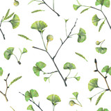Seamless pattern with green leaves of ginkgo biloba. Hand drawn illustration with colored pencils. Botanical natural design for textiles, interior or some background. - 224731470