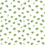 Seamless pattern with green leaves of ginkgo biloba. Hand drawn illustration with colored pencils. Botanical natural design for textiles, interior or some background. - 224731487