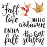Watercolor autumn lettering phrases. Hand painted calygraphy set. Fall in love, hello autumn, enjoy fall, the best season isolated on white background. - 224746677